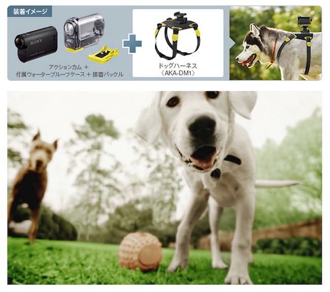Sony's Dog Cam