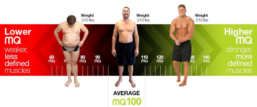 mq-score-chart