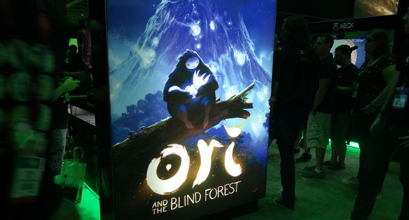 E3-Ori-and-the-Bind-forest