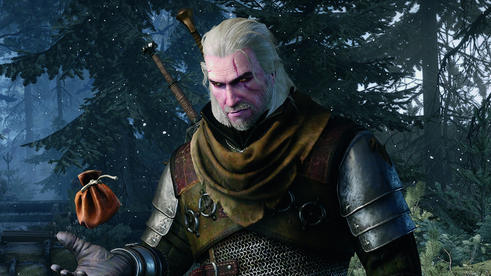 The Witcher 3 Wild Hunt rendered screen 2