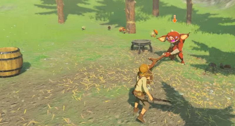 legend of zelda botw combat