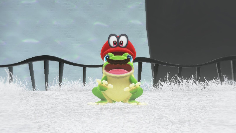 super mario odyssey frog