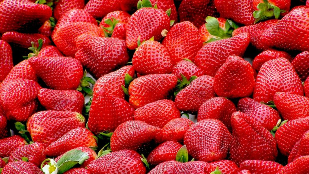 strawberries australia roberto baressi pixabay