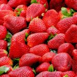 strawberries australia roberto baressi pixabay