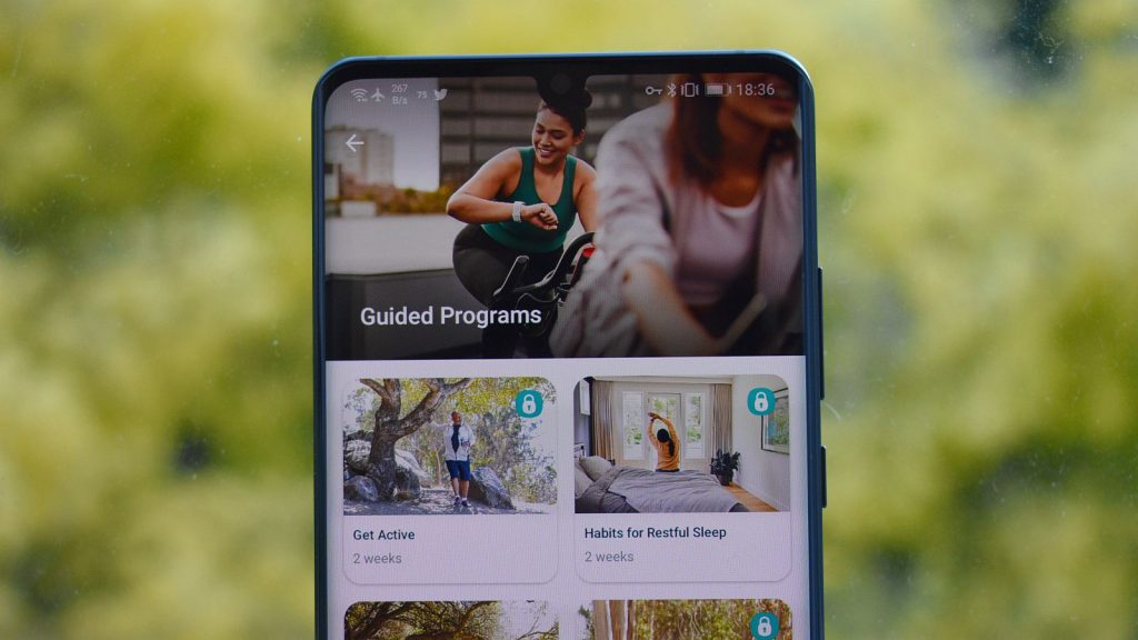fitbit premium guided programmes