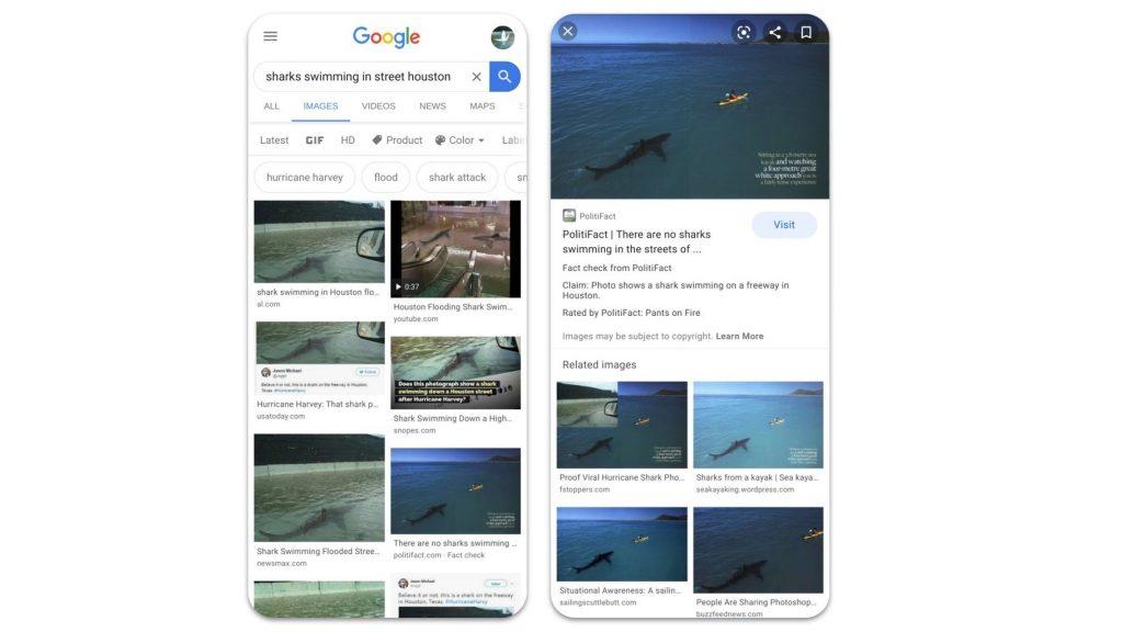 google fact check image search
