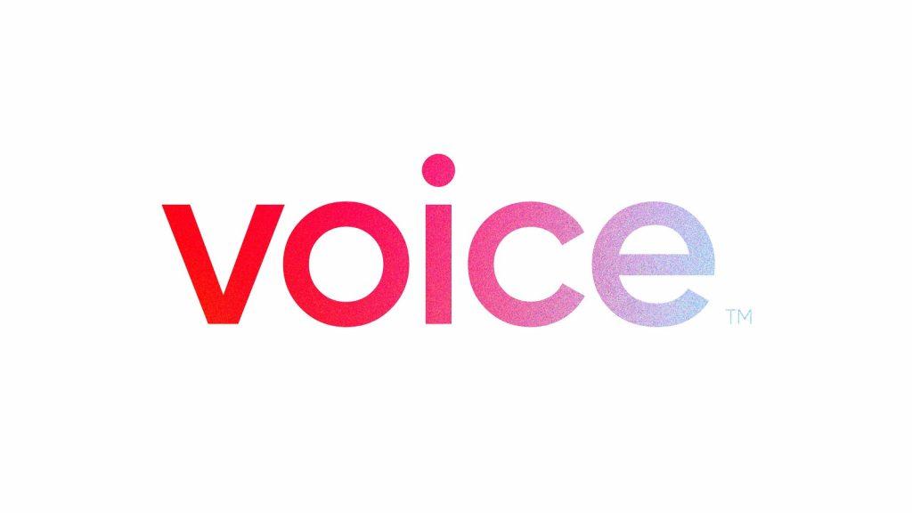 voice social media website