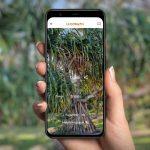 Google Woolaroo augmented reality indigenous language translation