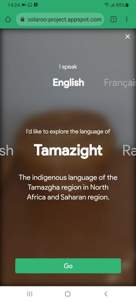 Google Woolaroo indigenous language translation