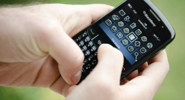 Blackberry2 (650 x 430)